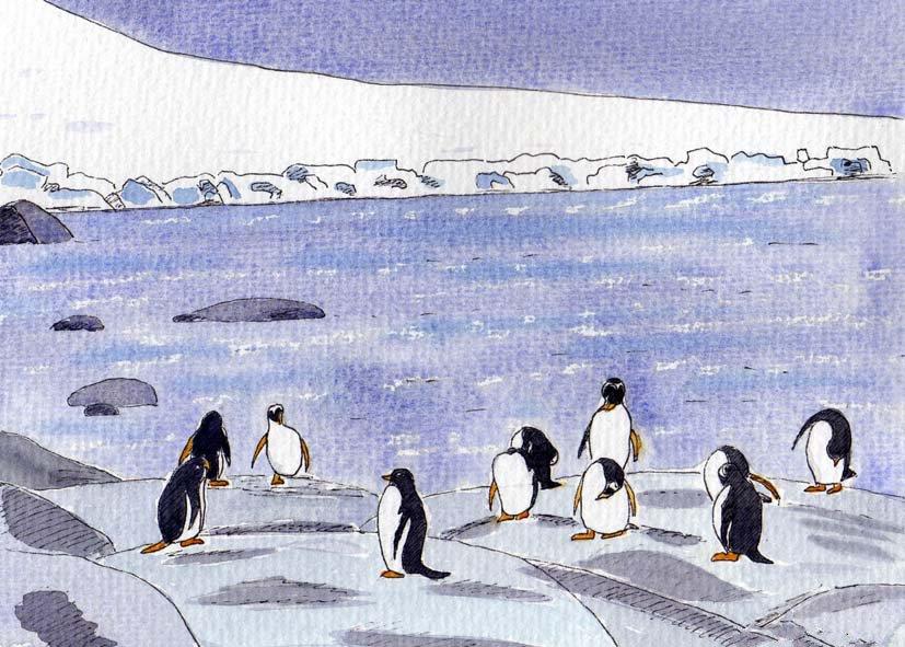 penguins2-sm